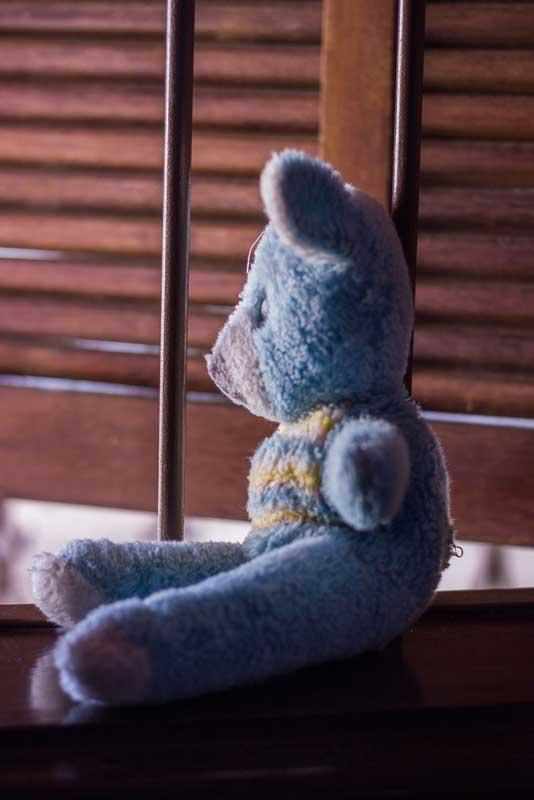 Fotografias do Ursinho azul
