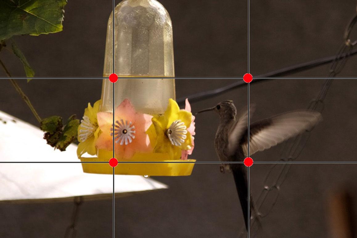 Regra dos terços da fotografia